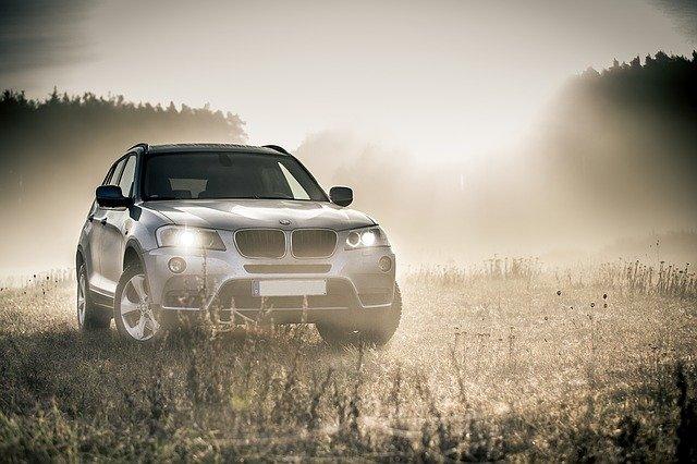 auto v mlze